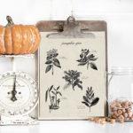 Pumpkin Spice Printable (with Recipe)