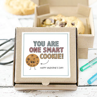 """Stop the cuteness! These cookie gifts are too cute for words. One for Valentine's Day and one to use as a """"Just Because"""" gift -- using mini pizza boxes. Print your cookie tags at livelaughrowe.com"""