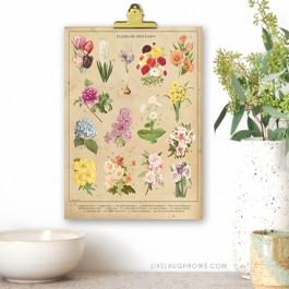 Beautiful Vintage Inspired 8x10 Botanical Spring Flowers Printable. Print one for you and a friend at livelaughrowe.com. #springprintable #botanical