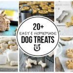 20+ Easy Homemade Dog Treats