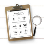 Bug Scavenger Hunt for Kids
