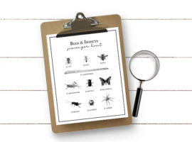 Heading to the park or nature center this summer? This Bug Scavenger Hunt for Kids should keep them busy as they hunt down these bugs and insects. Free printable at livelaughrowe.com #scavengerhunt #printable #kidsactivity