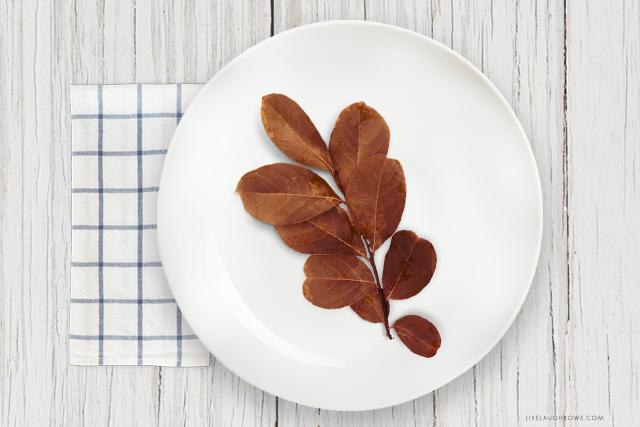 Leaves on Plate