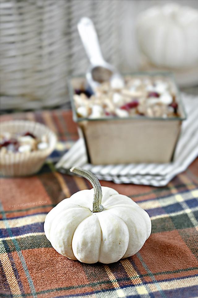 White Pumpkin in Fall Vignette