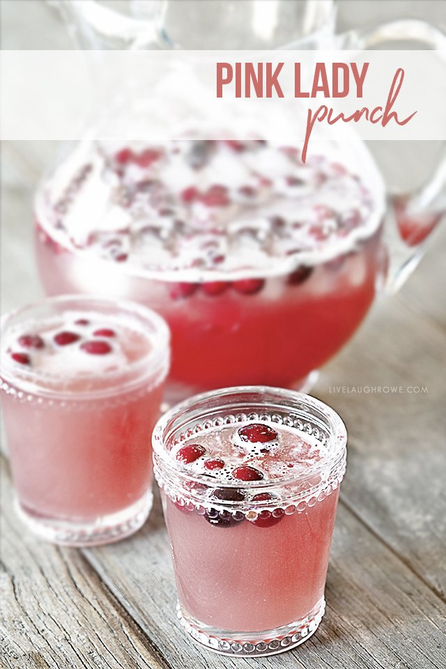 Pink Lady Punch with Cranberries