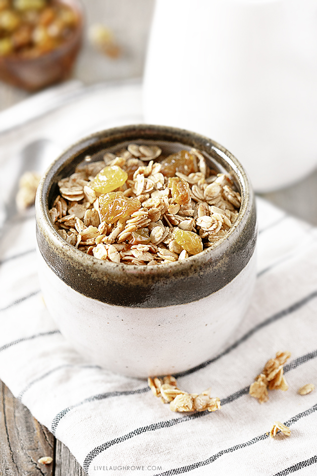 Healthy Homemade Granola in a bowl