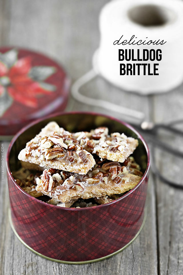 Holiday Tin of Bulldog Brittle