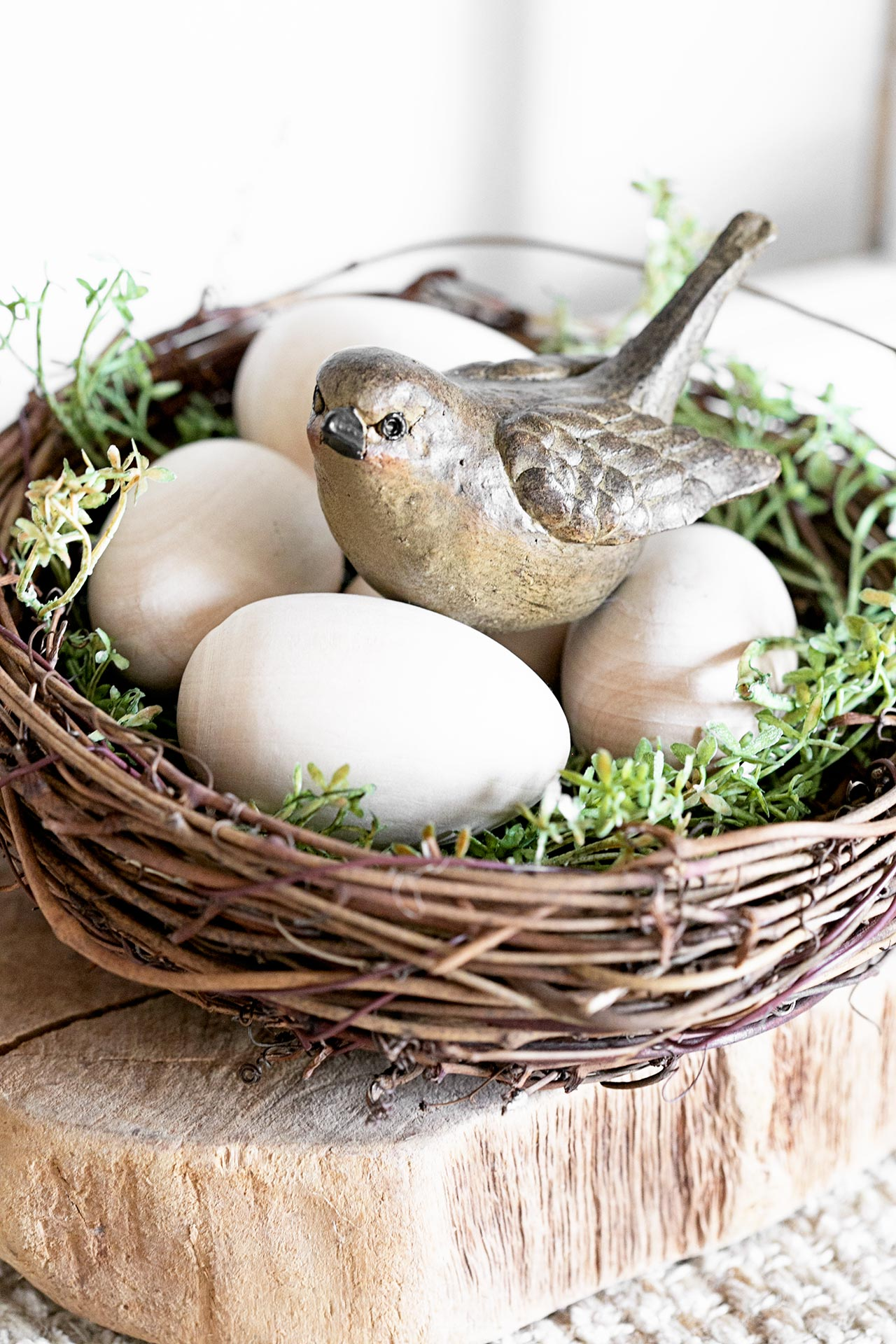 Bird in Nest. Spring Vignette